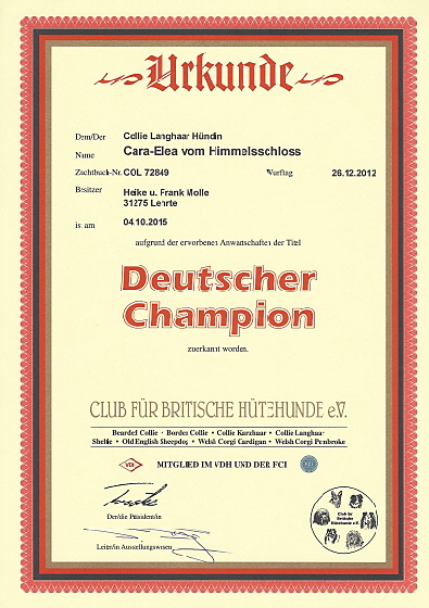 Champion Urkunde Club